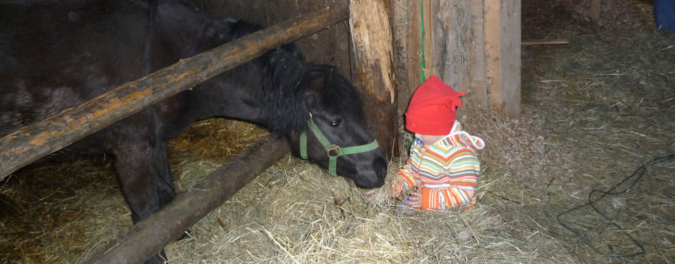 pferd-kind.jpg